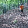 Waldtag mit Förster (15)