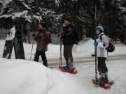 Schneeschuhwanderung 2013 Rohardsberg
